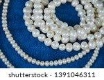 beautiful white pearl necklaces ... | Shutterstock . vector #1391046311