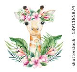 Stock photo a poster with a baby giraffe watercolor cartoon giraffetropical animal illustration jungle exotic 1391185874