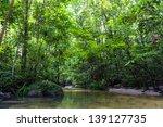 tropical rainforest river | Shutterstock . vector #139127735