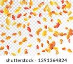 oak  maple  wild ash rowan... | Shutterstock .eps vector #1391364824