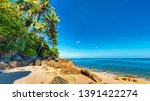 panorama of tropical beach with ... | Shutterstock . vector #1391422274