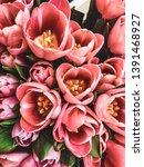 Beautiful Tulip Flower  Vintag...