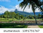 holiday with nature in cairns | Shutterstock . vector #1391751767