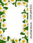 daisies and green leaves frame... | Shutterstock . vector #139189331
