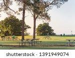 public park in texas  america...   Shutterstock . vector #1391949074