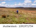 Femal Hill Walker Hiking The...