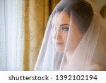 beautiful bride in white... | Shutterstock . vector #1392102194