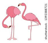 exotic pink flemish couple... | Shutterstock .eps vector #1392388721