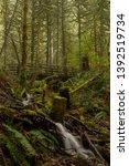 Wallace Fall Foot Waterfalls State - Fine Art prints