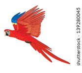 Illustration Of Scarlet Macaw...