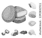 vector illustration of cuisine... | Shutterstock .eps vector #1392832511