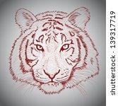 vector sketched tiger face   Shutterstock .eps vector #139317719
