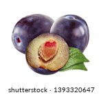 purple plums isolated on white... | Shutterstock . vector #1393320647