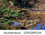 honghe yuanyang  samaba rice... | Shutterstock . vector #1393389134