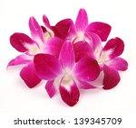 pink orchids | Shutterstock . vector #139345709