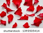 Stock photo red petals of hibiscus flowers on a white background 1393505414