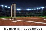illuminated round cricket... | Shutterstock . vector #1393589981