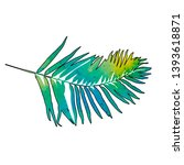 white background palm leaf ... | Shutterstock .eps vector #1393618871