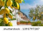 lemon garden in italian amalfi... | Shutterstock . vector #1393797287