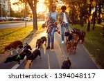 Stock photo couple dog walker walking with a group dogs in the park 1394048117