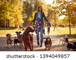 Stock photo happy dog walker woman enjoying with dogs while walking outdoors 1394049857