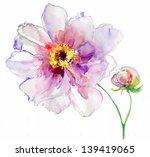 luxurious white peony flower...   Shutterstock . vector #139419065