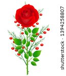 red rose with branches of...   Shutterstock .eps vector #1394258807