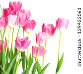 colorful tulips | Shutterstock . vector #139432061
