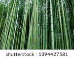kyoto  japan   may 11  2019  ... | Shutterstock . vector #1394427581