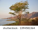 panoramic view from coastal... | Shutterstock . vector #1394581364