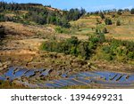 honghe yuanyang  samaba rice... | Shutterstock . vector #1394699231