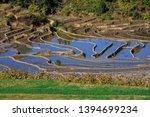 honghe yuanyang  samaba rice... | Shutterstock . vector #1394699234