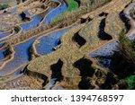 honghe yuanyang  samaba rice... | Shutterstock . vector #1394768597