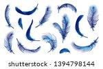 Vector Blue Feathers Collectio...