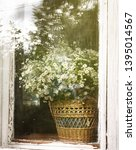 View Of The Rustic Window In...
