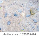 texture of gray stony ground... | Shutterstock . vector #1395059444