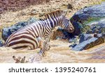 crossing kenya. national park.... | Shutterstock . vector #1395240761