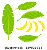banana leaves and fruits.... | Shutterstock .eps vector #139539815