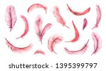 Vector Pink Feathers Collectio...