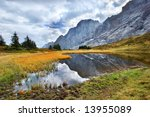a grass in a small bog in the... | Shutterstock . vector #13955089