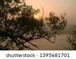 foggy morning. dawn outside the ... | Shutterstock . vector #1395681701