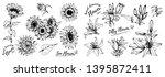 botanical hand drawn sketch.... | Shutterstock .eps vector #1395872411