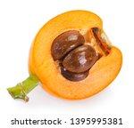 loquat fruit isolated on white... | Shutterstock . vector #1395995381