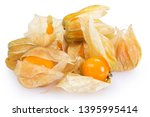 ripe physalis isolated on white ... | Shutterstock . vector #1395995414