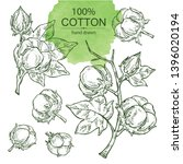 collection of cotton  cotton... | Shutterstock .eps vector #1396020194