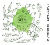 collection of neem  leaves and... | Shutterstock .eps vector #1396023977