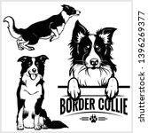 Border Collie Dog   Vector Set...