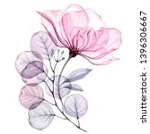 Stock photo transparent floral set isolated arrangement of big pink roses buds leaves branches in pastel 1396306667