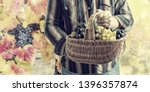 basket in hands of winemaker... | Shutterstock . vector #1396357874