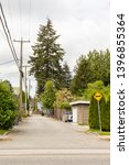 Looking towards a typical residential alley on an overcast spring day, Vancouvers elegant street trees tower over the roof tops forming a textured mosaic of green foilage. British Columbia, Canada.